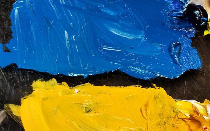 Украинцы благодарны Эстонии за поддержку.