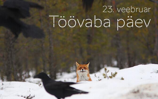 Выпадающие на выходные дни государственные праздники в Эстонии не компенсируются отдельными свободными днями.