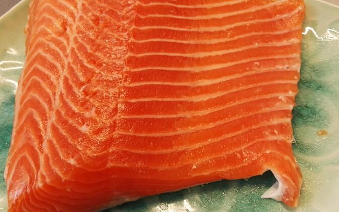 Филе лосося.