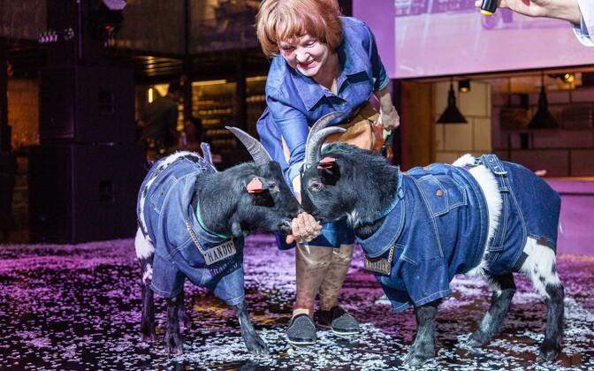 Rae Meierei kitsed on heas toitumuses, kinnitab veterinaarameti kontroll.
