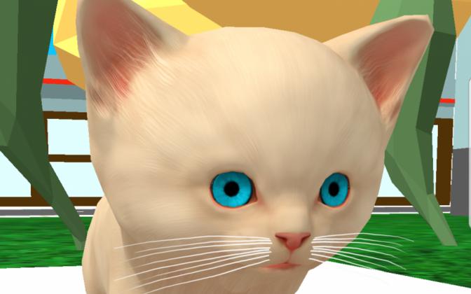 Kass on mobiilimängus lapse põhiline kaaslane, kes käib temaga igal pool kaasas.