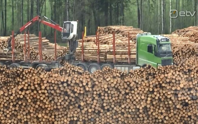 The planned pulp mill would require a substantial portion of the wood logged in Estonia each year.