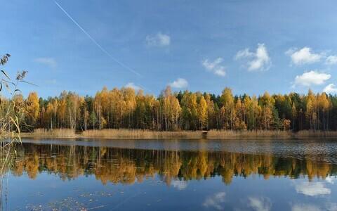 Martiska järve tase langes paari aasta jooksul 1,8 meetri võrra.