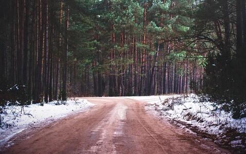 Грунтовая дорога. Иллюстративная фотография.