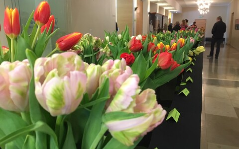 Дня тюльпанов в Тюри
