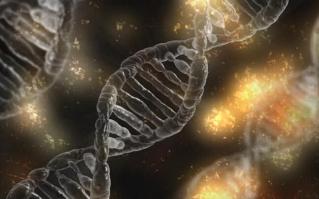 DNA võib elu jooksul keskkonnategurite tõttu muutuda.