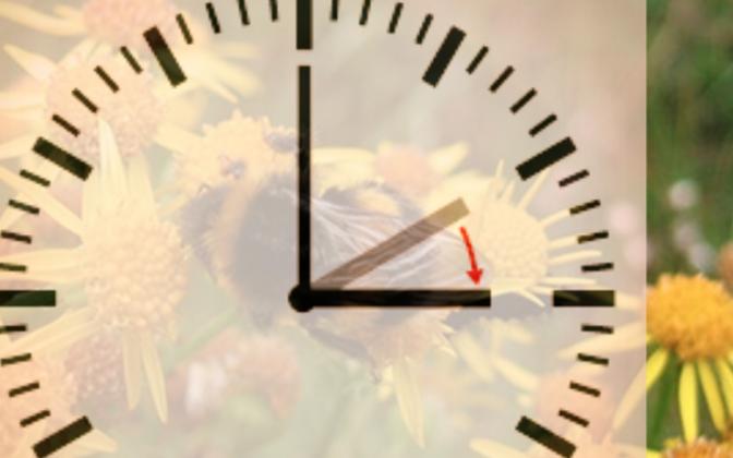 Ööl vastu pühapäeva keeratakse kellad üks tund edasi ehk minnakse üle suveajale.
