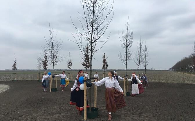 Hollandi tammepargi avamine