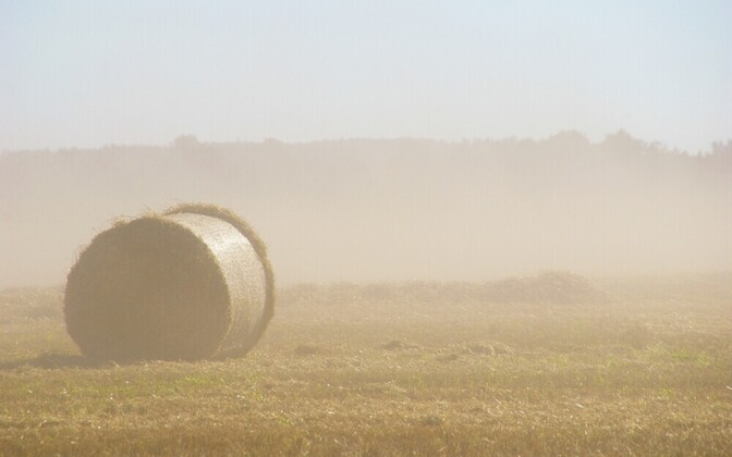 Roll of hay on a field. Image is illustrative.