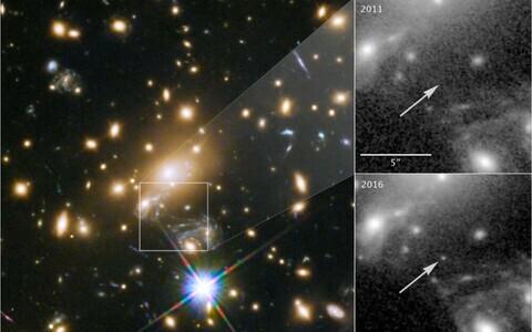 MACS J1149+2223 Lensed Star 1.