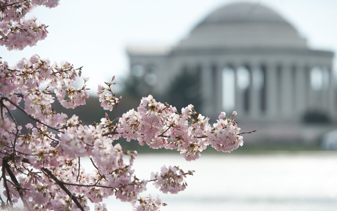 Вашингтон. Иллюстративное фото