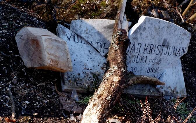 Raietööd Pirita kalmistul.