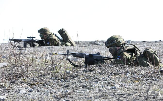 Учения Сил обороны Эстонии.