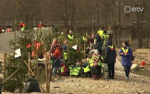 Lasteaialapsed aitasid loomaaias puid istutada.