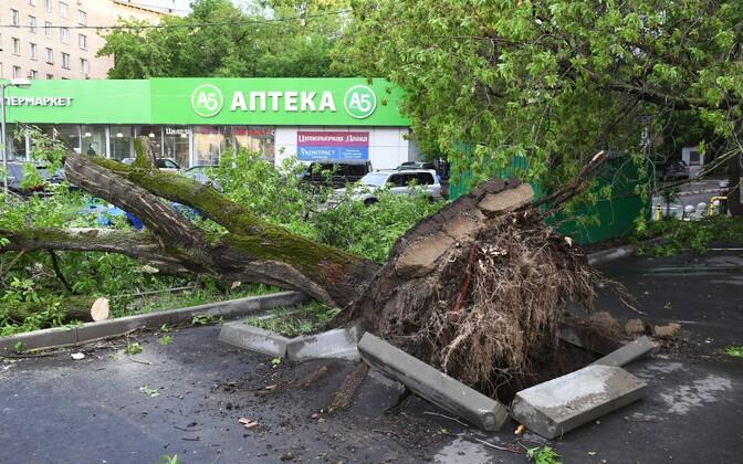 Orkaani tagajärjed Moskvas.