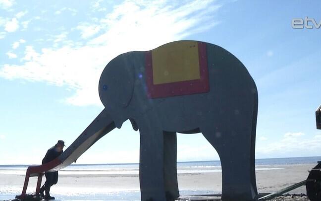 Курортный слон.