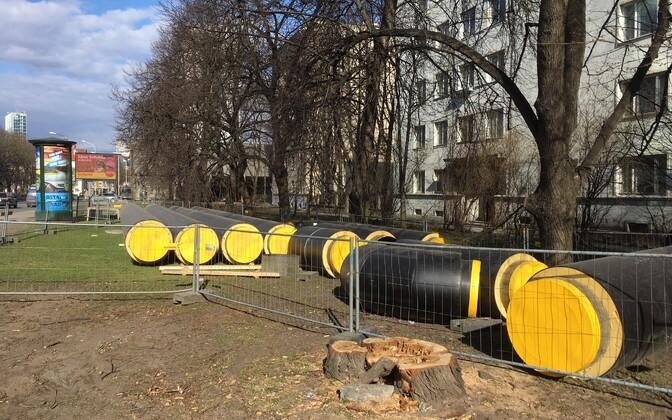 Спиленные во время реконструкции улицы Гонсиори деревья.