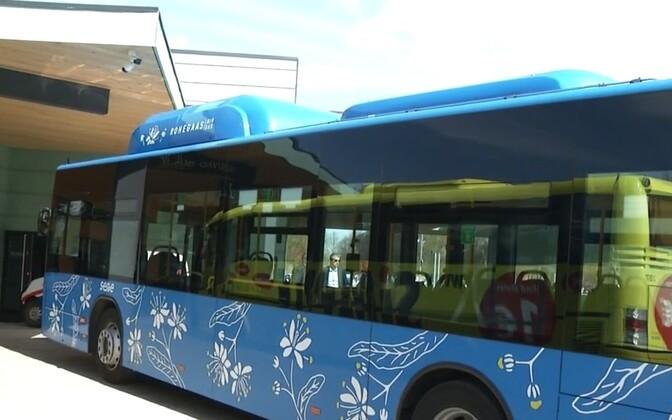 Rohegaasibuss Pärnus.