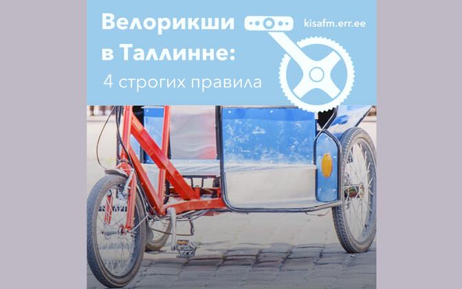 Велорикши в Таллинне: 4 строгих правила