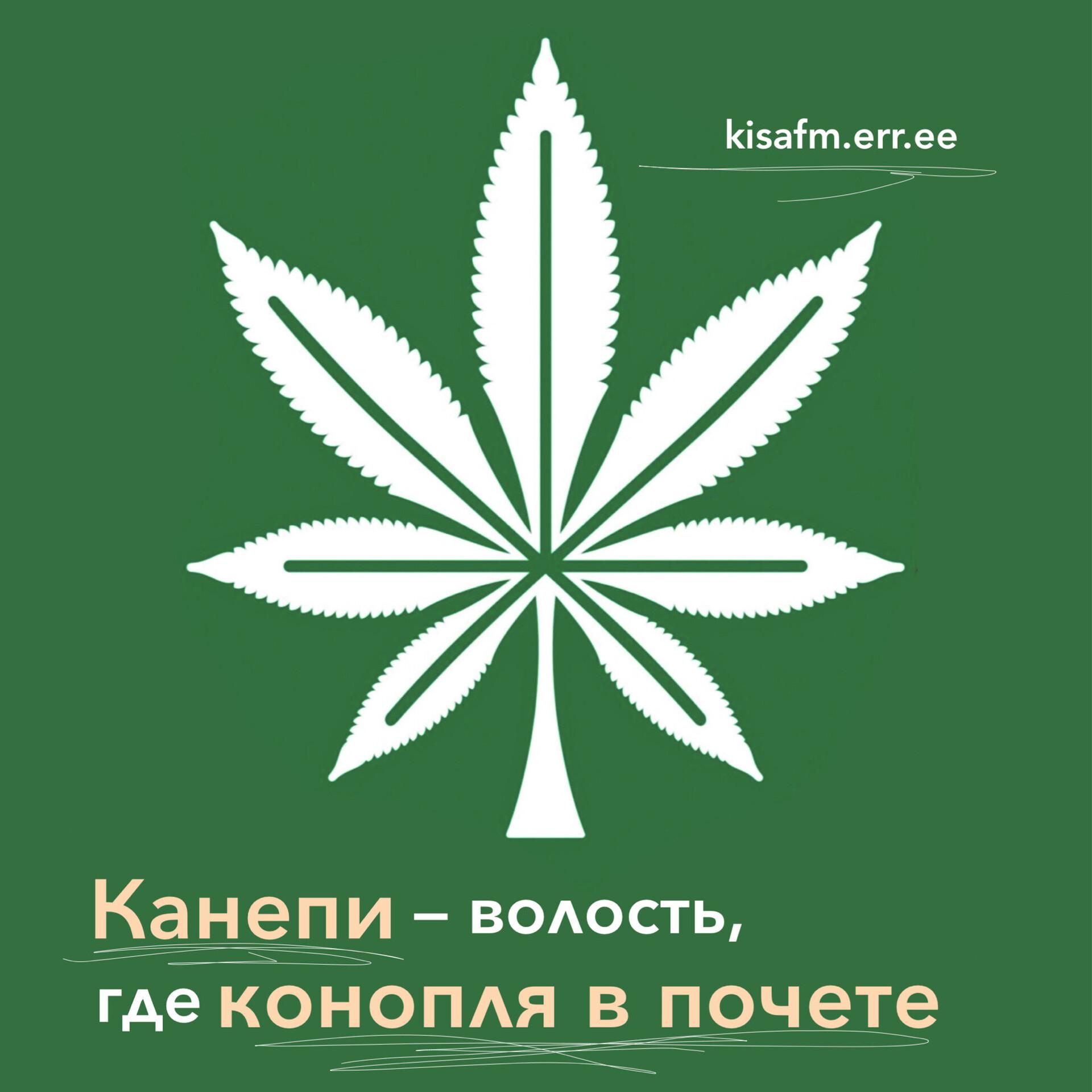 Где конопля марихуана сонливость