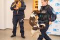 Västriku loomakliinik kinkis Põhja prefektuurile belgia lambakoera kutsika.