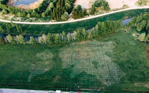Kokku pandi mulda 2000 männipuu istikut