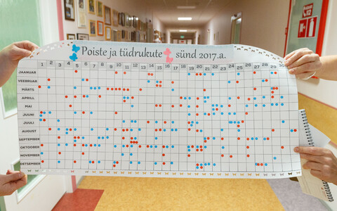 A chart of all births at Põlva Hospital in 2017.