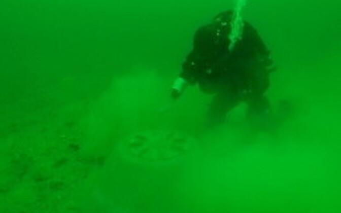 Meremiini kahjutuks tegemine
