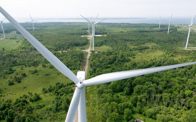Paldiski Wind Farm includes wind turbines owned by both Eesti Energia and Nelja Energia.