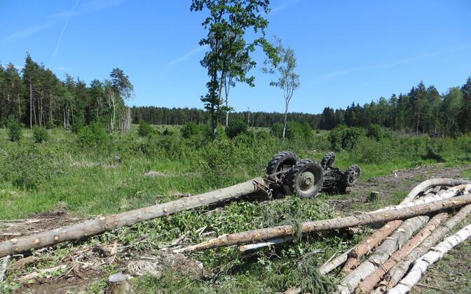 Фотография с места происшествия.