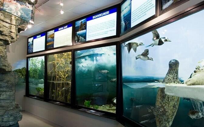 Soode ja siseveekogude näitus Loodusmuuseumis