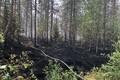 Пожар в Википалу.