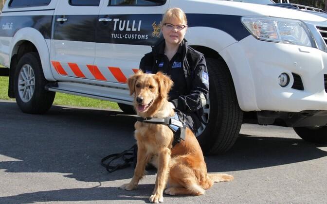 Сотрудница финской погранслужбы с ретривером Айно на погранпункте Ваалимаа.