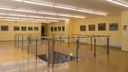 Gunta Randla näituse avamine