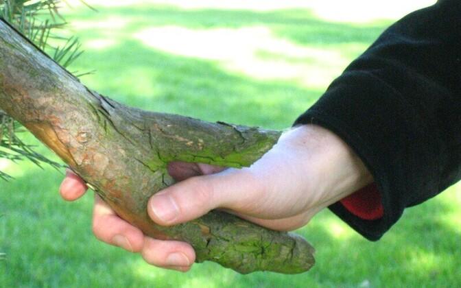 Meie suhtlus on läinud pealiskaudsemaks. Harva tähendab küsimus kuidas käsi käib sisulist huvi inimese käekäigu kohta.