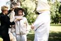 Керсти Кальюлайд забирает мед в Кадриорге.