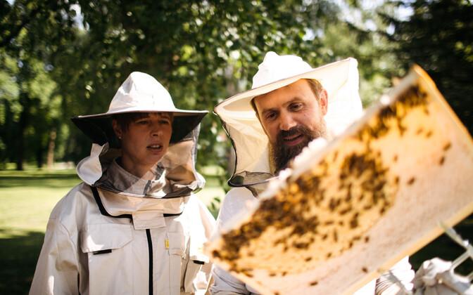 Eesti vabariigi president Kersti Kaljulaid võttis kantselei ees mett