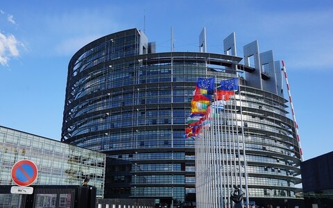 Очередные выборы в Европарламент пройдут в конце мая 2019 года.