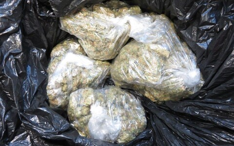 Photo of seized marijuana.