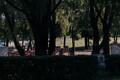 Певческое поле утром после выступления Guns N' Roses.