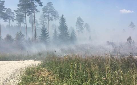 В Конью волости Тойла горит лес.