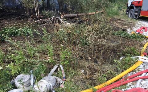 В Конью волости Тойла горит лес