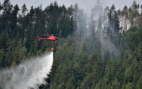 Лесные пожары в Швеции.