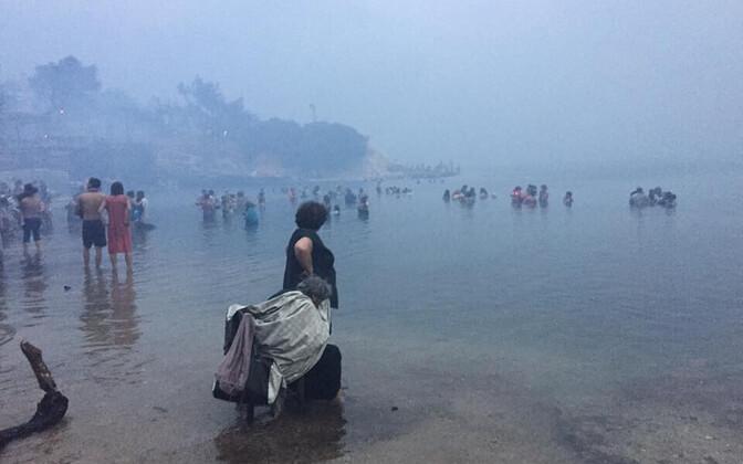 Пожары в Греции.