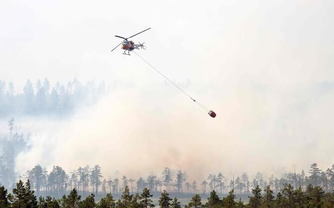 Metsatulekahju Rootsis.