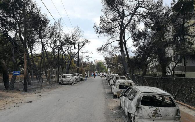 Maastikupõlengu tagajärjed Mati linnas.