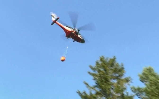 PPA helicopter involved in the fire fighting activities over Narva-Jõesuu on Friday.