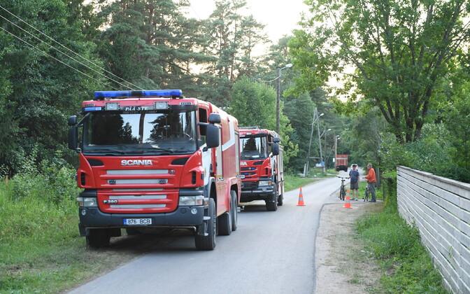 Пожар в лесу в Нарва-Йыэсуу.