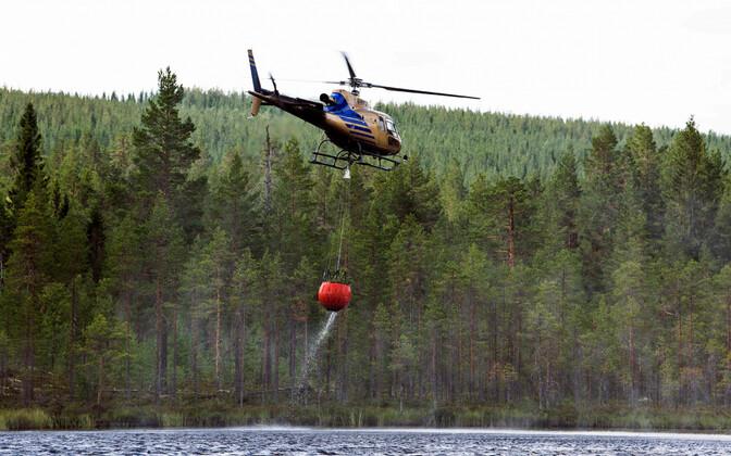 Helikopter Rootsis metsapõlengu kustutamiseks vett võtmas.
