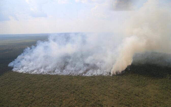 Пожар в заповеднике Алам-Педья
